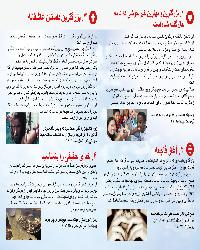 Faltflyer Farsi